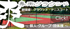 Private sports ground Individuals or groups Baseball,tennis,soccer,rugby,handball,etc